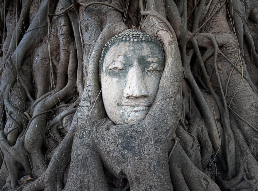 Face of Buddha in archeological site in Thailand