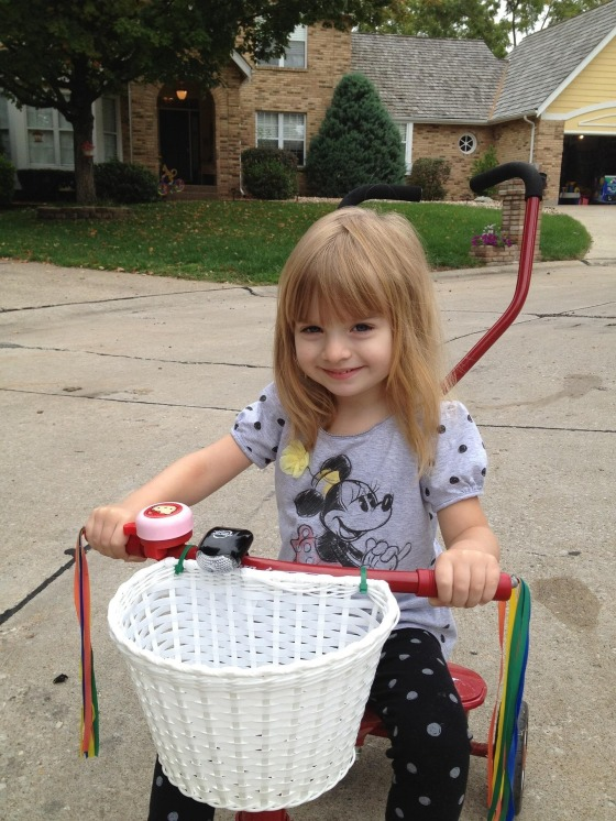 Amyann Brockmeyer child-366535_1920