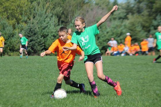 soccer-2436345_1920 Josh Dick