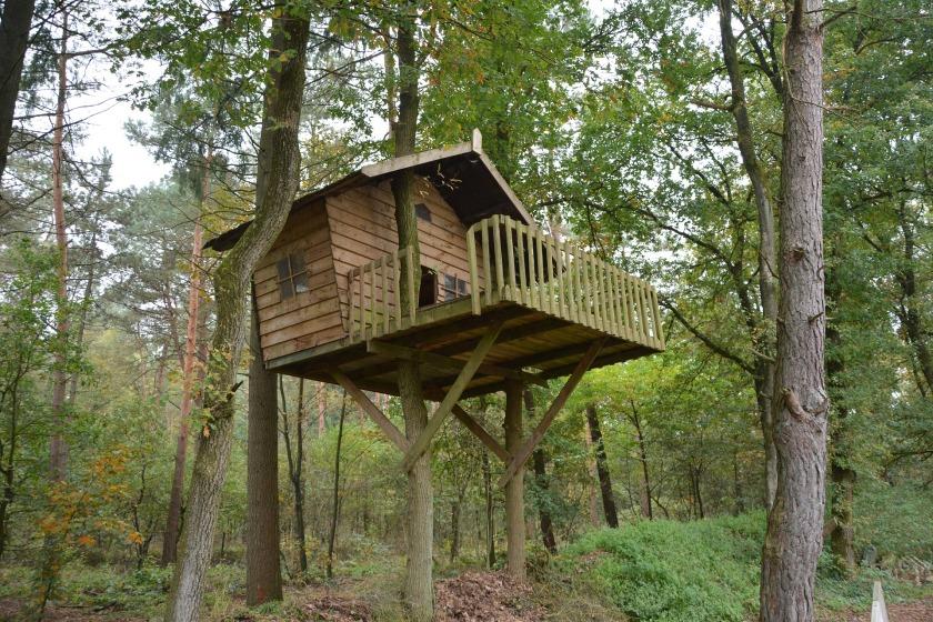 tree-house-1778884_1920 (2) Gerda Huiskamp